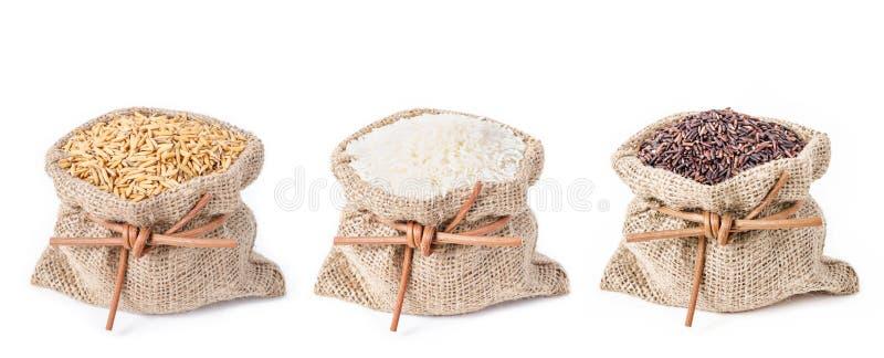 Συλλογή ρυζιού στην τσάντα σάκων στοκ φωτογραφία