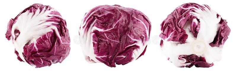 Συλλογή του κόκκινου radicchio σαλάτας στο λευκό στοκ φωτογραφία με δικαίωμα ελεύθερης χρήσης