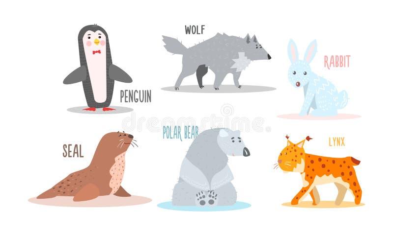 Συλλογή των αρκτικών ζώων με τα ονόματα, penguin, λύκος, κουνέλι, σφραγίδα, πολική αρκούδα, διανυσματική απεικόνιση λυγξ απεικόνιση αποθεμάτων