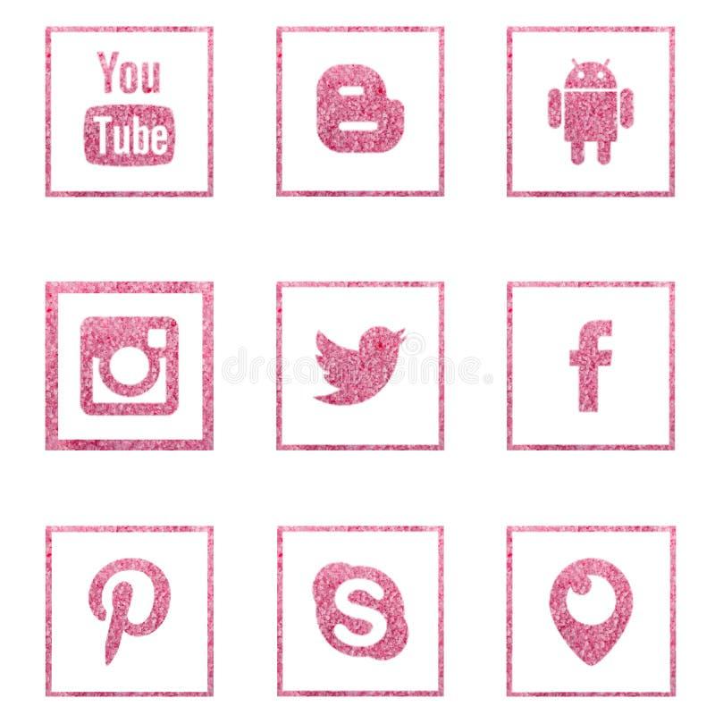 Συλλογή των δημοφιλών κοινωνικών λογότυπων μέσων από το άλας θάλασσας διανυσματική απεικόνιση