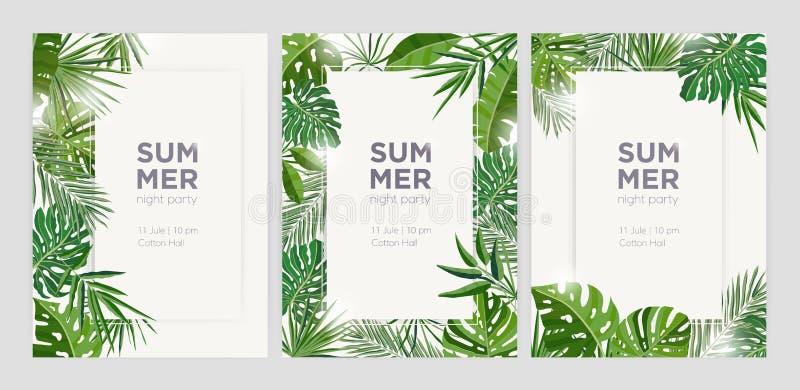 Συλλογή των κάθετων θερινών υποβάθρων με τα πλαίσια ή των συνόρων φιαγμένων από πράσινη τροπική φύλλα ή ζούγκλα φοινικών εξωτικά απεικόνιση αποθεμάτων