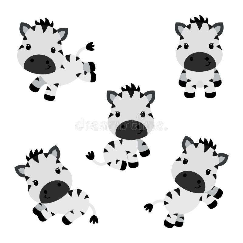 Συλλογή των μικρών αστείων zebras Διανυσματική απεικόνιση παιδιών απεικόνιση αποθεμάτων