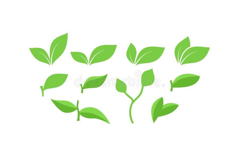 Συλλογή των πράσινων φύλλων, φύλλα με τα διανύσματα κλάδων ελεύθερη απεικόνιση δικαιώματος