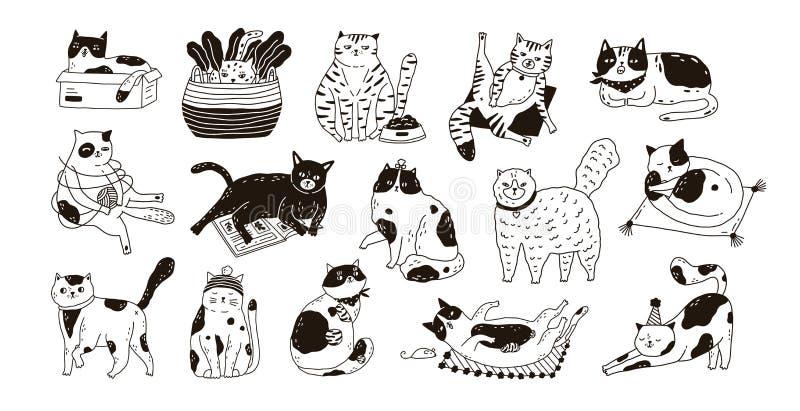 Συλλογή των χαριτωμένων αστείων γατών που κάθονται, πλένοντας, τεντωμένος, παιχνίδι Δέσμη του λατρευτού καθαρής φυλής χεριού ζώων ελεύθερη απεικόνιση δικαιώματος