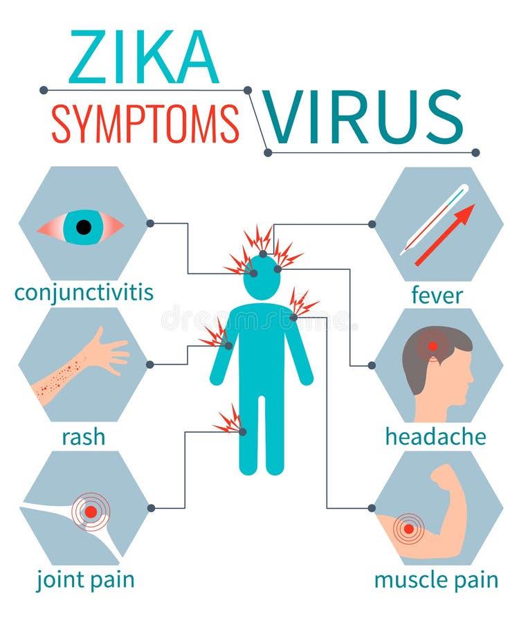 Συμπτώματα ιών Zika infografic διανυσματική απεικόνιση