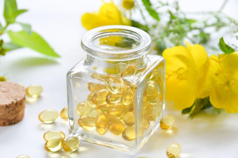 Συμπλήρωμα με primrose βραδιού τα λουλούδια στοκ εικόνα με δικαίωμα ελεύθερης χρήσης