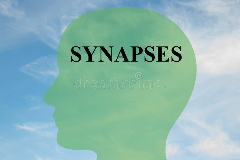 Συνάψεις - έννοια εγκεφάλου διανυσματική απεικόνιση