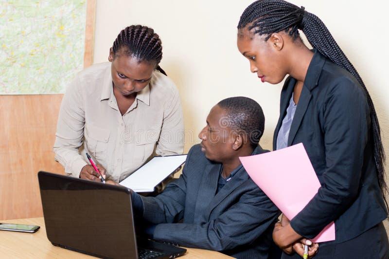 Συνέταιροι που εργάζονται σε ένα lap-top στοκ εικόνα