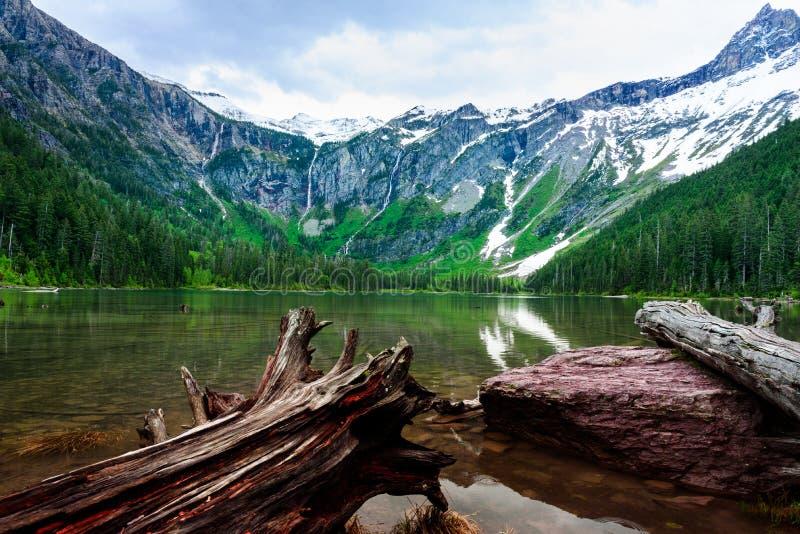 Συνδέεται την ακτή της λίμνης χιονοστιβάδων στο εθνικό πάρκο παγετώνων στοκ φωτογραφία