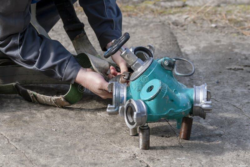 Συνδέοντας κόκκορας πυρκαγιάς στοκ φωτογραφία με δικαίωμα ελεύθερης χρήσης