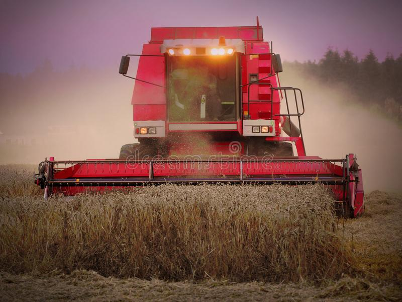 συνδυάστε την αποστολή φορτηγών φόρτωσης συγκομιδών σιταριού ξεφορτώνει το σίτο στοκ φωτογραφία