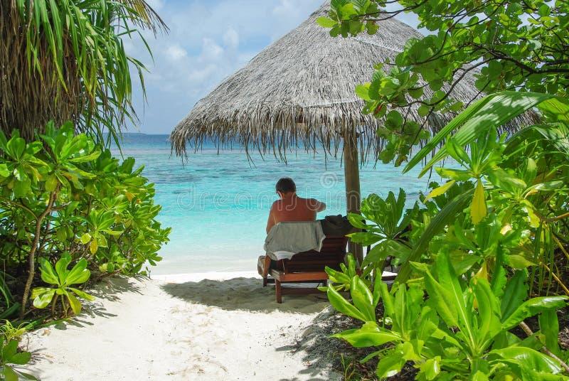 Συνεδρίαση ατόμων κάτω από την ομπρέλα στην όμορφη παραλία στοκ εικόνες με δικαίωμα ελεύθερης χρήσης