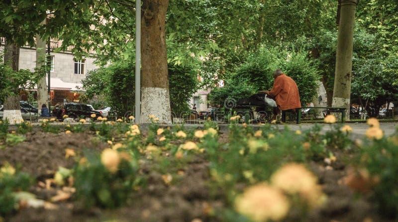 Συνεδρίαση ατόμων σε έναν πάγκο στοκ εικόνες