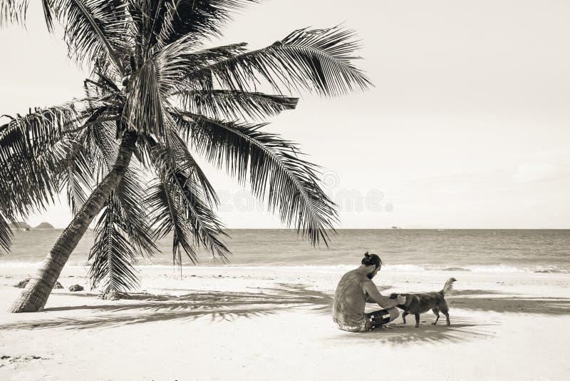 Συνεδρίαση ατόμων στην παραλία πλησίον από το φοίνικα στοκ εικόνα με δικαίωμα ελεύθερης χρήσης