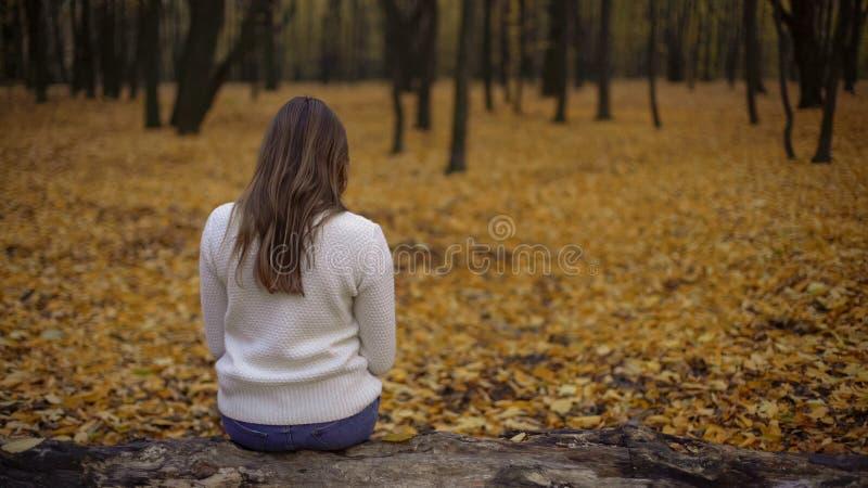 Συνεδρίαση κοριτσιών στο πάρκο φθινοπώρου μόνο, σκεπτόμενος για την προηγούμενη και σπασμένη σχέση στοκ φωτογραφίες