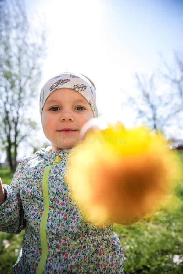 Συνεδρίαση μικρών κοριτσιών στις κίτρινες πικραλίδες χλόης και εκμετάλλευσης στοκ φωτογραφίες