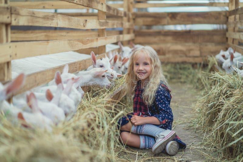 συνεδρίαση παιδιών χαμόγελου στο έδαφος κοντά στις αίγες στο αγρόκτημα και κοίταγμα στοκ εικόνες με δικαίωμα ελεύθερης χρήσης