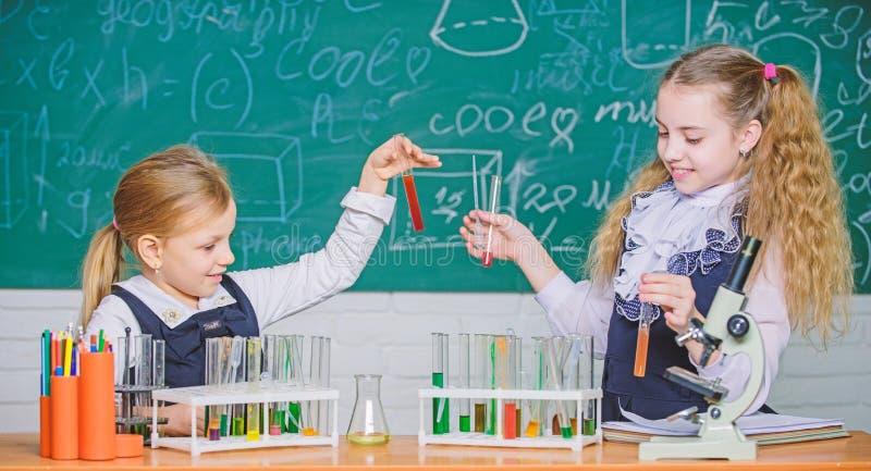 Συνεργάτες σχολικών εργαστηρίων Παιδιά πολυάσχολα με το πείραμα Χημική ανάλυση και παρατήρηση της αντίδρασης Σωλήνες δοκιμής με στοκ φωτογραφίες