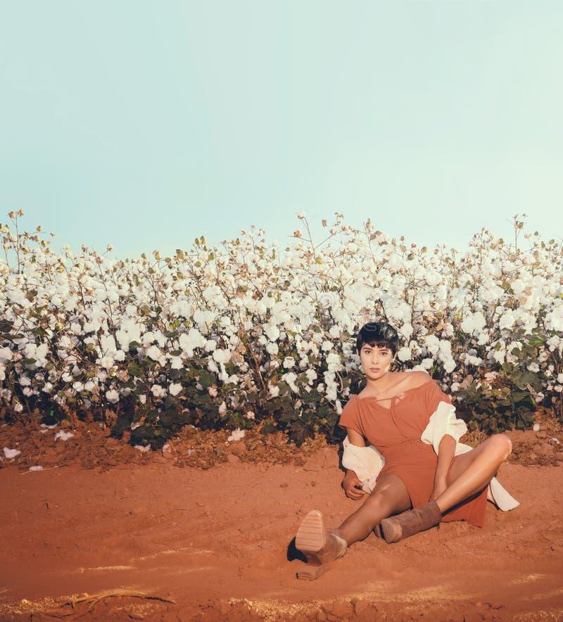 Συνεδρίαση γυναικών σε έναν τομέα του βαμβακιού στο κόκκινο αμμοχάλικο ερήμων στην Αριζόνα στοκ εικόνες