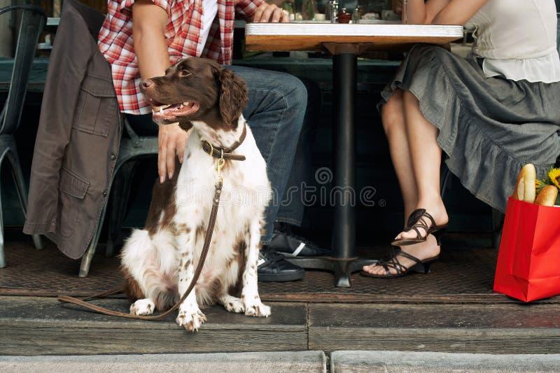 Συνεδρίαση ζεύγους με το σκυλί στο εστιατόριο στοκ φωτογραφία