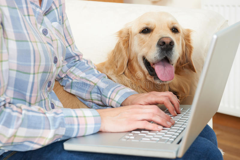 Συνεδρίαση σκυλιών δίπλα στον ιδιοκτήτη που χρησιμοποιεί το lap-top στοκ εικόνες με δικαίωμα ελεύθερης χρήσης