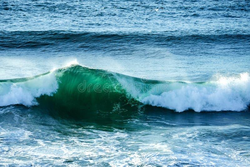 Συντετριμμένο κύμα στον ωκεανό στα κεφάλια Fingal, ενδοχώρα Gold Coast στοκ εικόνες με δικαίωμα ελεύθερης χρήσης