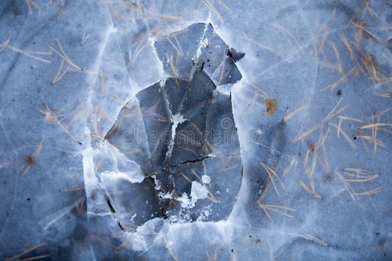 Συντριμμένος πάγος σε μια δασική, παγωμένη λίμνη, η κρούστα πάγου στοκ φωτογραφίες