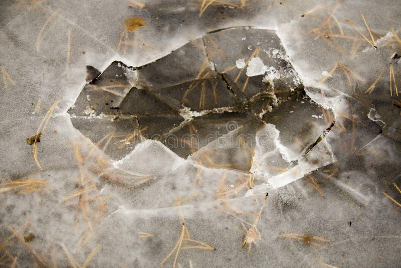 Συντριμμένος πάγος σε μια δασική, παγωμένη λίμνη, η κρούστα πάγου στοκ εικόνες με δικαίωμα ελεύθερης χρήσης