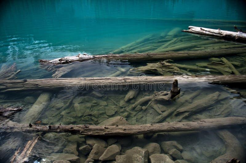 Συνδέεται τη λίμνη στις λίμνες Joffre, Pemberton, Βρετανική Κολομβία στοκ φωτογραφία