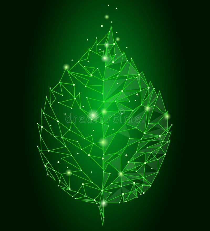 Συνδεδεμένο φύλλο τριγώνων γραμμών σημείου σημείων Η έννοια φύσης Eco στο πράσινο υπόβαθρο ανάβει το γεωμετρικό χαμηλό πολυ εικον ελεύθερη απεικόνιση δικαιώματος