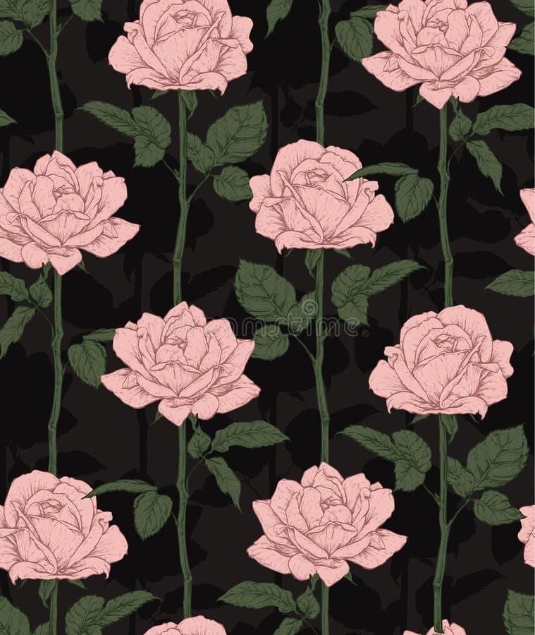 Συρμένα χέρι ανθίζοντας τριαντάφυλλα ρόδινα τριαντάφυλλα προτύπ επίσης corel σύρετε το διάνυσμα απεικόνισης διανυσματική απεικόνιση