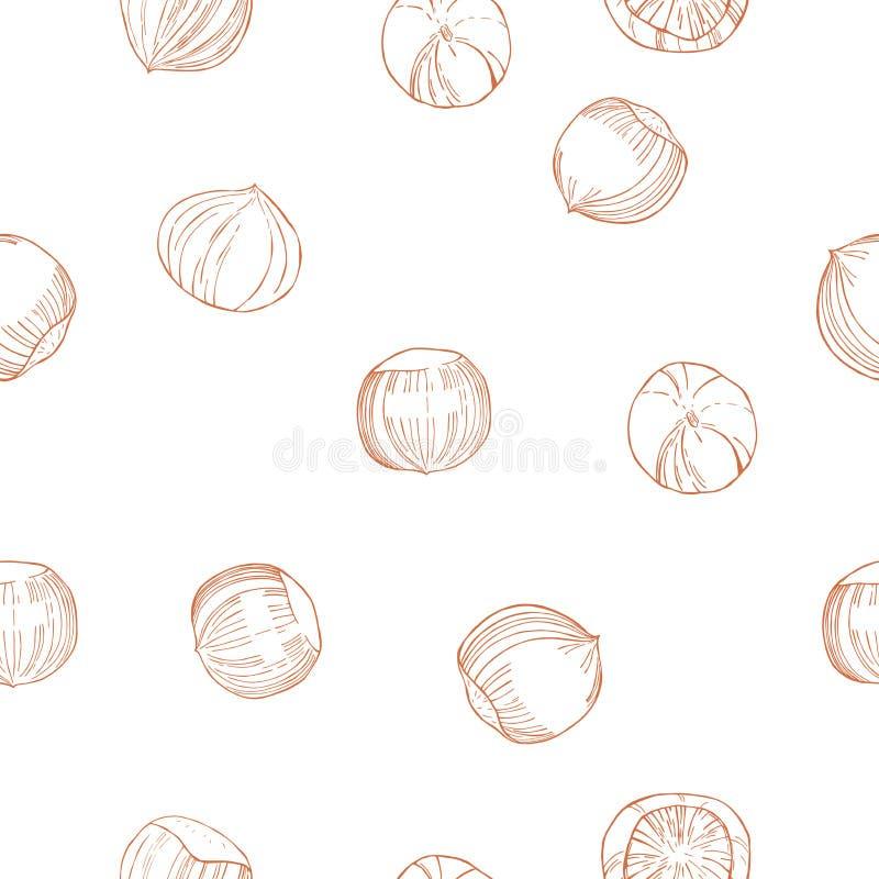Συρμένα χέρι καρύδια Καρύδι φουντουκιών άνευ ραφής διάνυσμα προτύπων διανυσματική απεικόνιση