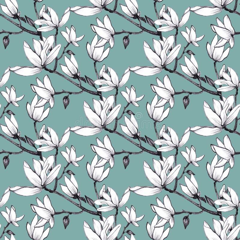 Συρμένα χέρι λουλούδια magnolia σχεδίων άνευ ραφής στο πράσινο υπόβαθρο ελεύθερη απεικόνιση δικαιώματος