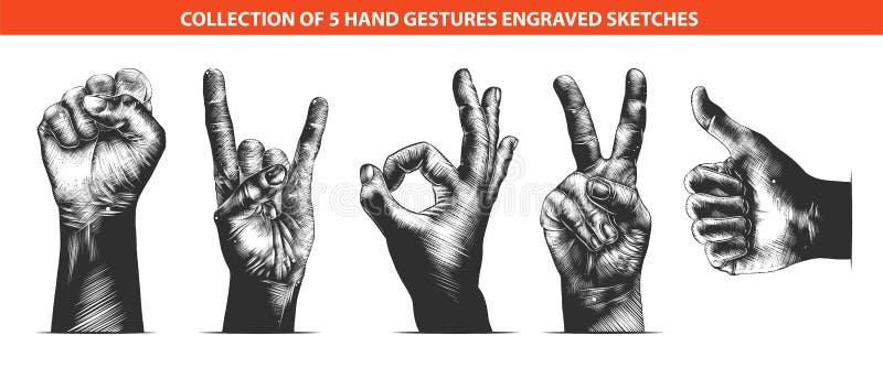 Συρμένα χέρι σκίτσα σε μονοχρωματικό απομονωμένος στο άσπρο υπόβαθρο Λεπτομερές εκλεκτής ποιότητας σχέδιο ύφους ξυλογραφιών διανυσματική απεικόνιση