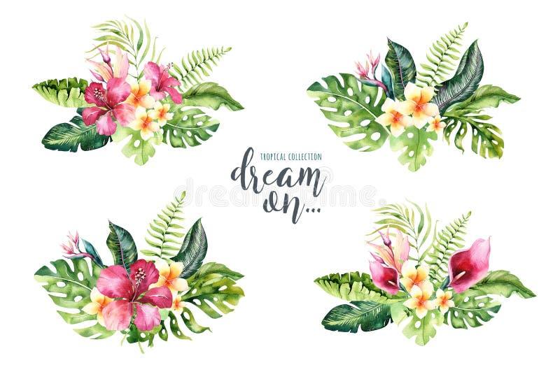 Συρμένες χέρι ανθοδέσμες λουλουδιών watercolor τροπικές Εξωτικά φύλλα φοινικών, δέντρο ζουγκλών, τροπικά στοιχεία βοτανικής της Β απεικόνιση αποθεμάτων