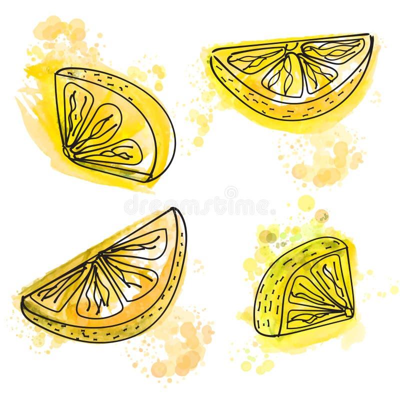 Συρμένες χέρι φέτες του λεμονιού με τους juicy κίτρινους παφλασμούς χρωμάτων ελεύθερη απεικόνιση δικαιώματος
