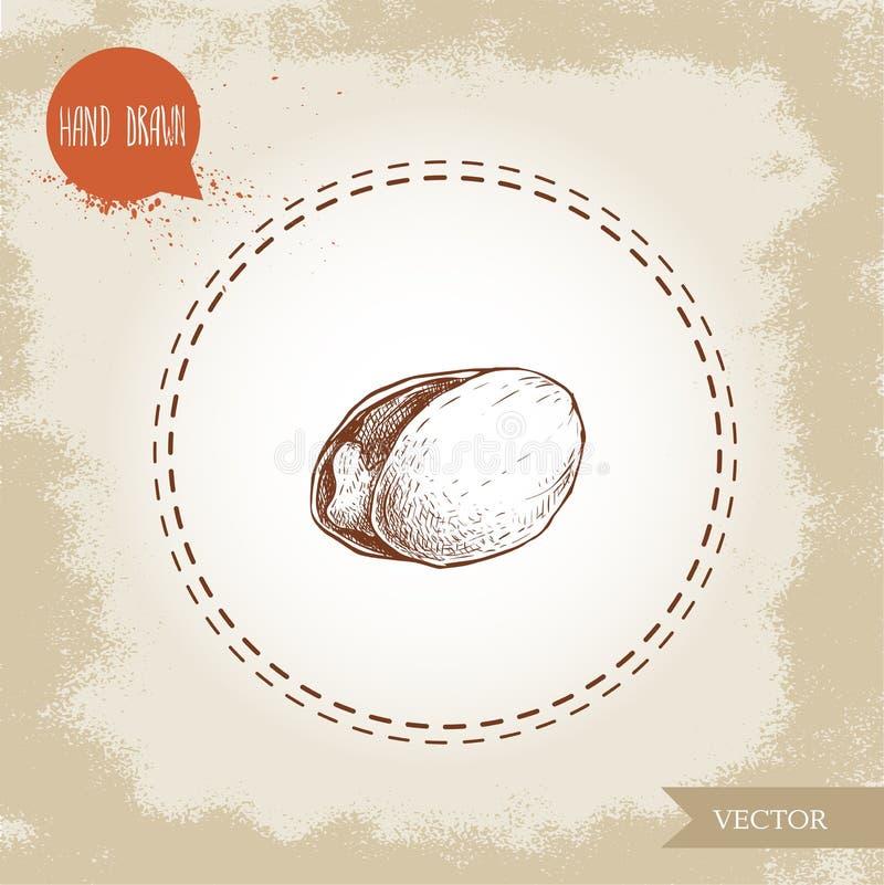 Συρμένη απεικόνιση ύφους σκίτσων φυστικιών χέρι Ανοικτό τηγανισμένο και φρέσκο ενιαίο ανοικτό καρύδι με το σπόρο επίσης corel σύρ απεικόνιση αποθεμάτων
