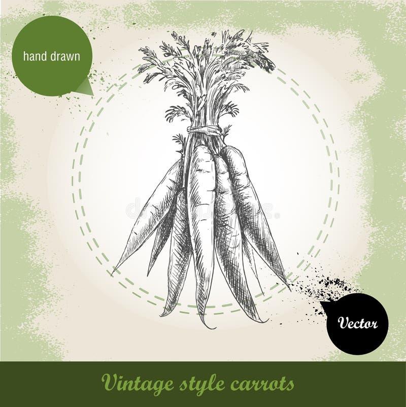 Συρμένη χέρι δέσμη καρότων Οργανικό υπόβαθρο τροφίμων eco φυτικό διανυσματική απεικόνιση