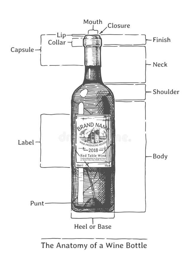 Συρμένη χέρι απεικόνιση ενός μπουκαλιού κρασιού διανυσματική απεικόνιση