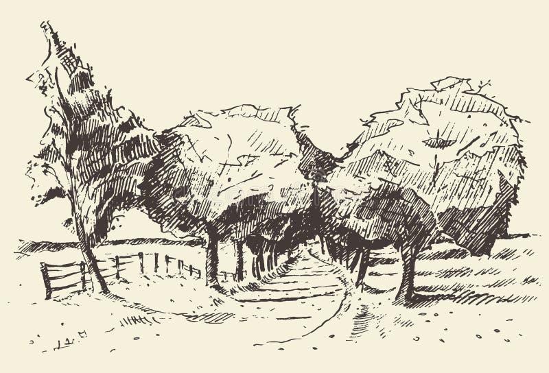 Συρμένη χέρι απεικόνιση λιβαδιών δέντρων τοπίων διανυσματική απεικόνιση