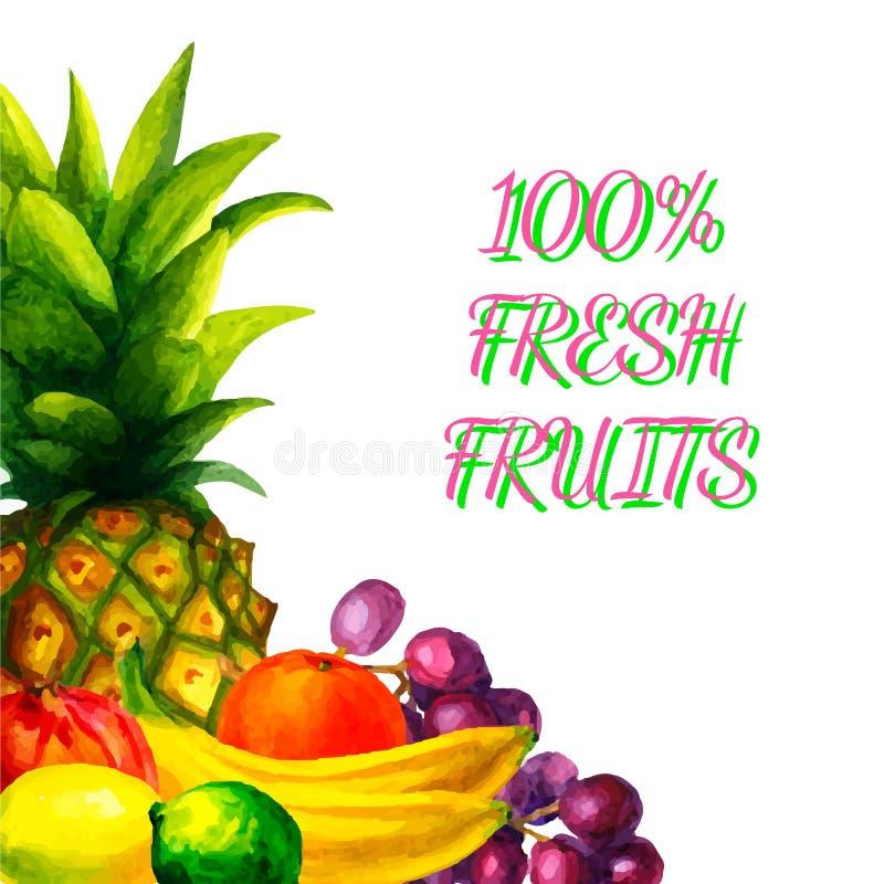 Συρμένη χέρι απεικόνιση φρούτων watercolor φρέσκια οργανική που τίθεται στο άσπρο υπόβαθρο ελεύθερη απεικόνιση δικαιώματος