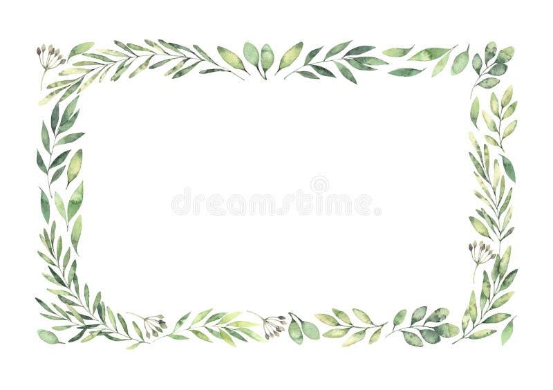 Συρμένη χέρι απεικόνιση watercolor Βοτανικά ορθογώνια σύνορα απεικόνιση αποθεμάτων