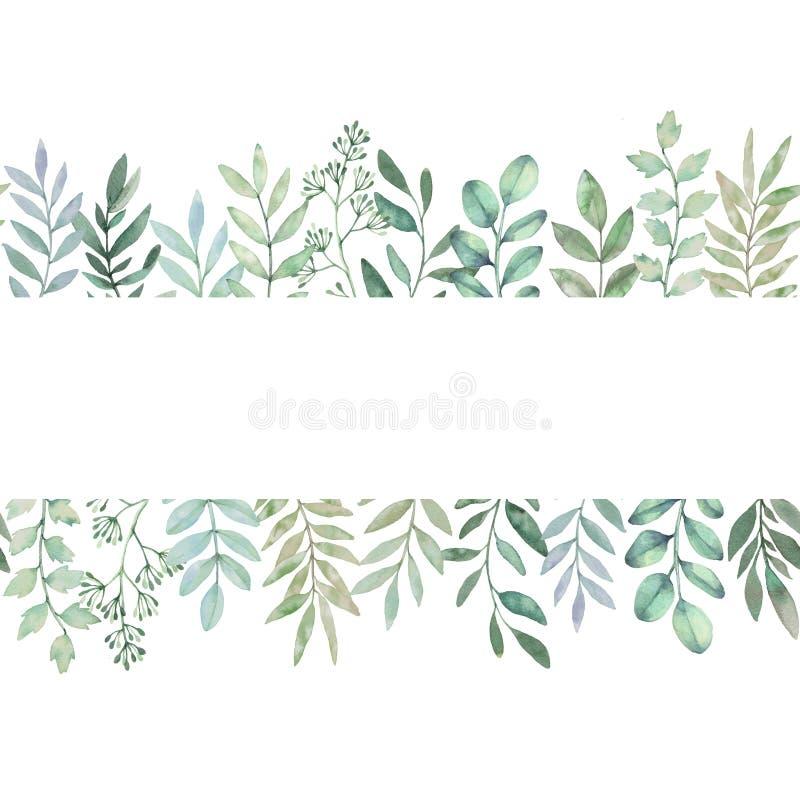 Συρμένη χέρι απεικόνιση watercolor Βοτανικό άνευ ραφής backgroun ελεύθερη απεικόνιση δικαιώματος