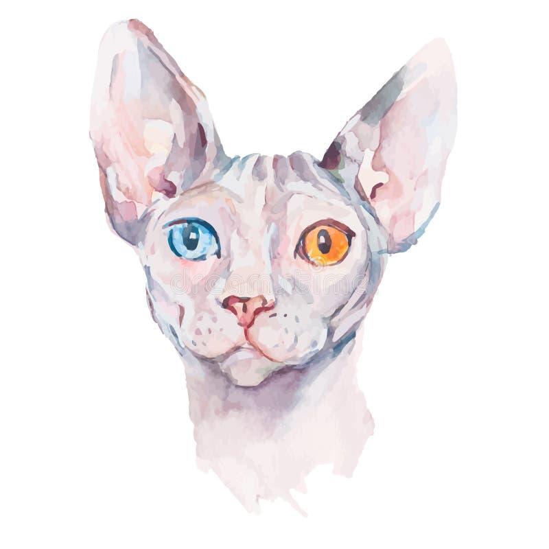 Συρμένη χέρι γάτα Sphynx πορτρέτου κομψή Διανυσματικά στοιχεία Μόδα watercolor διανυσματική απεικόνιση