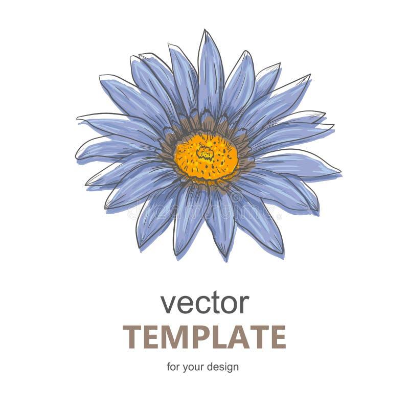 Συρμένη χέρι διανυσματική απεικόνιση στυλών και μελανιού του λουλουδιού Gerbera Daisy ελεύθερη απεικόνιση δικαιώματος