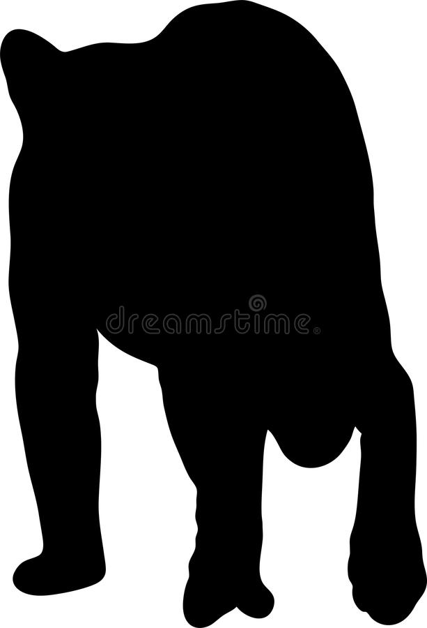 Συρμένη χέρι σκιαγραφία ενός άγριου τσιτάχ διανυσματική απεικόνιση