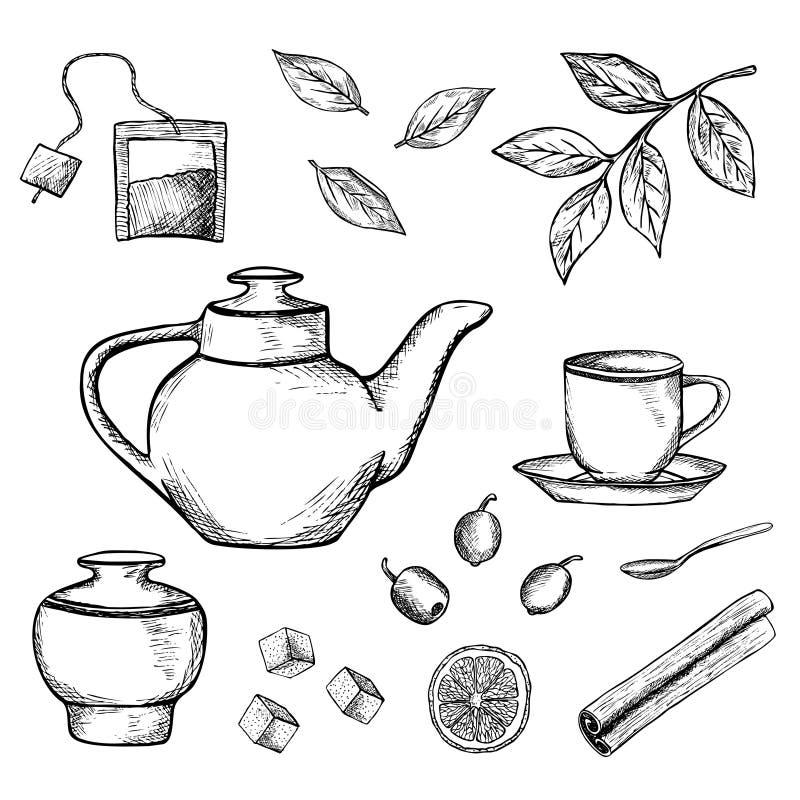 Συρμένη χέρι σκιαγραφημένη απεικόνιση τσαγιού απεικόνιση αποθεμάτων