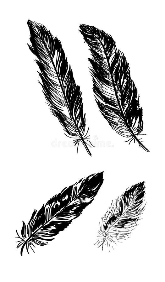 Συρμένη χέρι τυπωμένη ύλη τέχνης boho με τα διακοσμητικά φτερά στοκ εικόνες