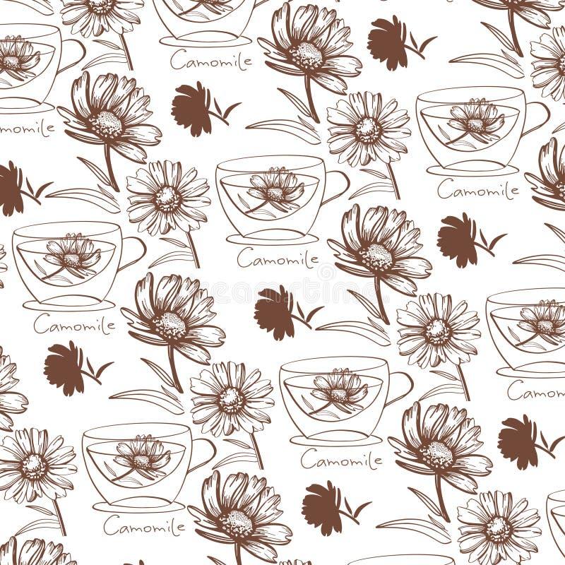 Συρμένη χέρι camomile διανυσματική απεικόνιση λουλουδιών διανυσματική απεικόνιση