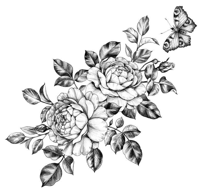 Συρμένη χέρι Floral δέσμη με την πεταλούδα απεικόνιση αποθεμάτων